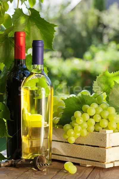 Foto d'archivio: Vino · uve · bianco · vino · rosso · bottiglie · vite