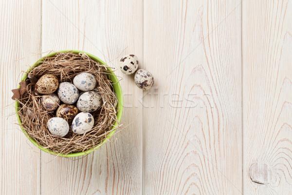 пасхальных яиц гнезда мнение копия пространства Пасху Сток-фото © karandaev