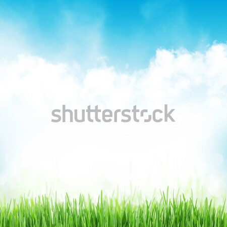 Abstract sunny spring background Stock photo © karandaev