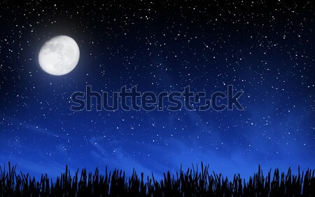 Stock photo: Deep night sky with many stars and grass
