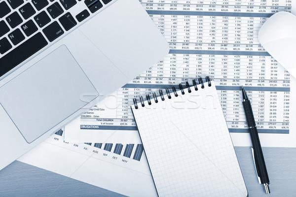 Finansal kağıtları bilgisayar ofis Stok fotoğraf © karandaev