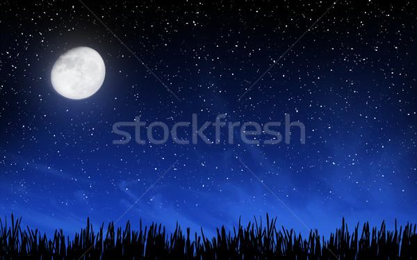 Głęboko nieba wiele gwiazdki trawy księżyc Zdjęcia stock © karandaev