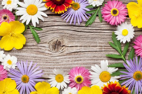 Giardino fiori legno legno top view Foto d'archivio © karandaev
