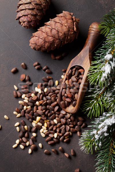 Pine noten steen tabel top Stockfoto © karandaev