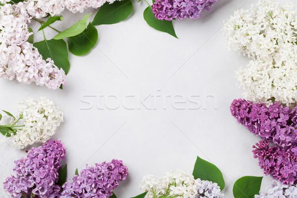 красочный сирень цветы каменные Top мнение Сток-фото © karandaev