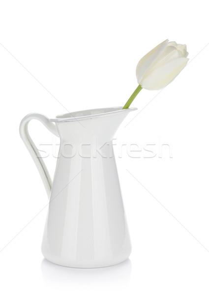 Fehér tulipán kancsó izolált húsvét virág Stock fotó © karandaev