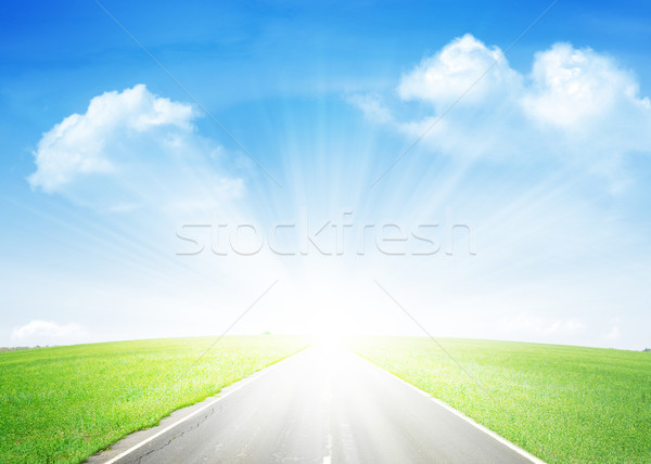 Asphalt road through the green field and blue sky Stock photo © karandaev