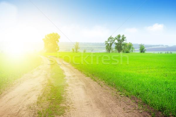 дороги зеленая трава области лет пейзаж Сток-фото © karandaev