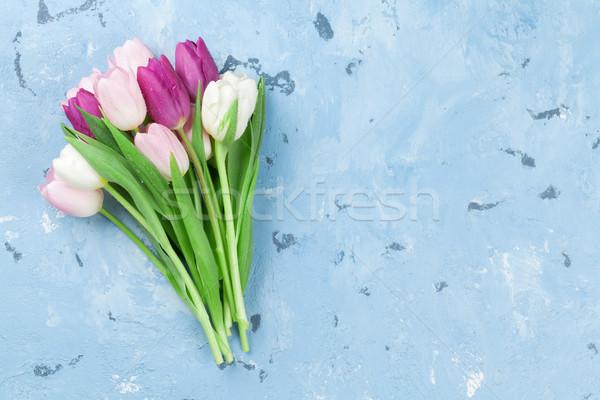 Pink tulips over stone background Stock photo © karandaev