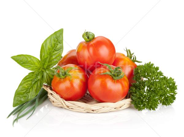 зрелый помидоров базилик петрушка зеленый лук изолированный Сток-фото © karandaev