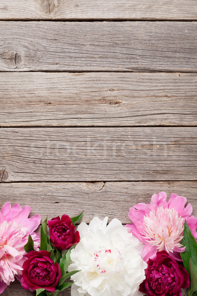 Garden peony flowers on wood Stock photo © karandaev