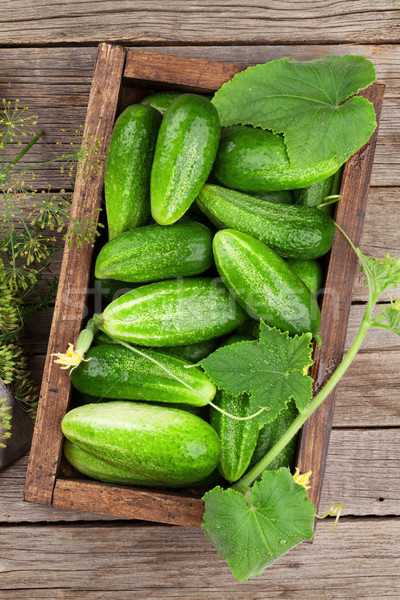 Vers tuin komkommers houten tafel top Stockfoto © karandaev