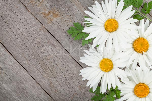 Zdjęcia stock: Daisy · rumianek · kwiaty · drewniany · stół · kopia · przestrzeń · liści