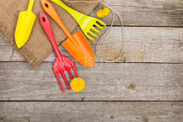 Garden tools with flower Stock photo © karandaev