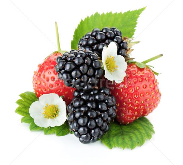 Fraise BlackBerry fruits isolé blanche alimentaire Photo stock © karandaev