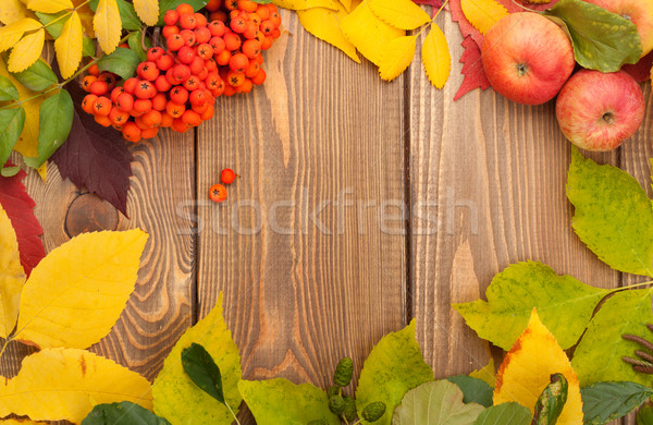 Autumn leaves, rowan berries and apples over wood background Stock photo © karandaev