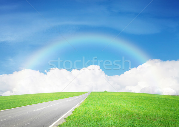 Asphalt road through the green field and sky with clouds and rai Stock photo © karandaev