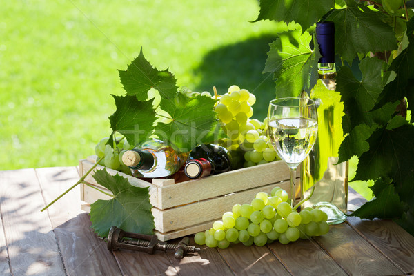 White and red wine bottle, glass, vine and grapes Stock photo © karandaev
