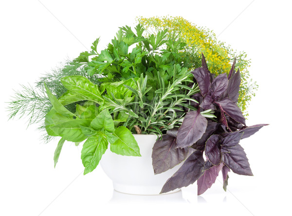 Stock photo: Fresh garden herbs in mortar
