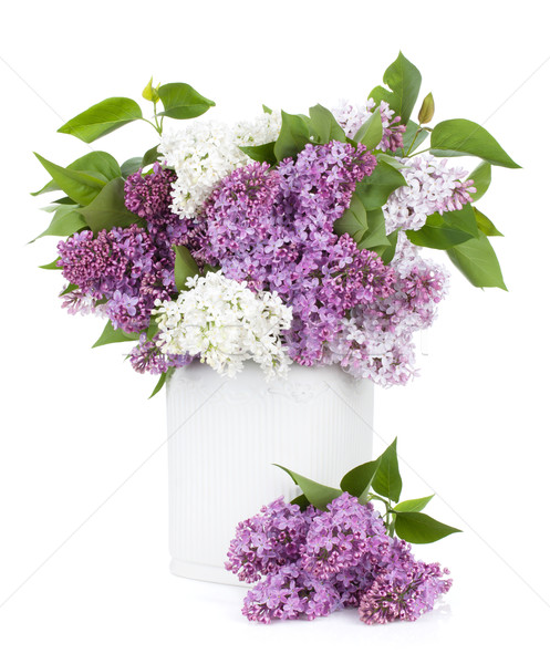 Lilac flowers in vase Stock photo © karandaev