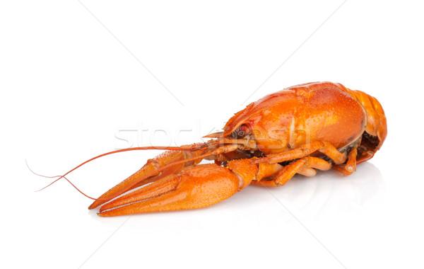 Boiled crayfish Stock photo © karandaev
