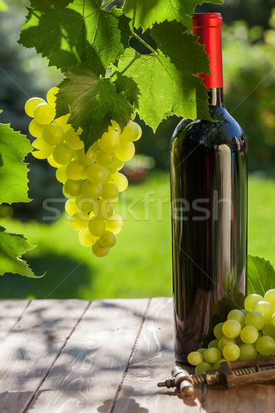 Photo stock: Vin · raisins · vin · rouge · bouteille · vigne