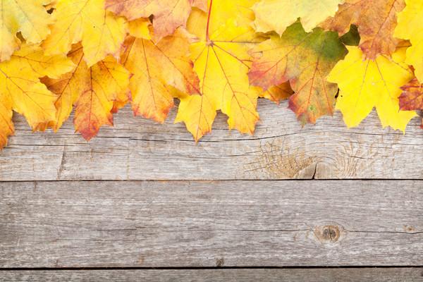 красочный осень клен листьев деревянный стол природы Сток-фото © karandaev