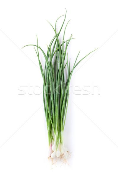Fresh garden herbs. Spring onion Stock photo © karandaev