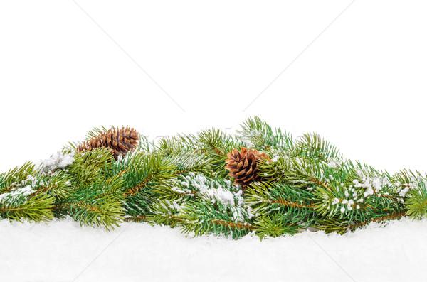 Karácsony fenyőfa hó izolált fehér copy space Stock fotó © karandaev