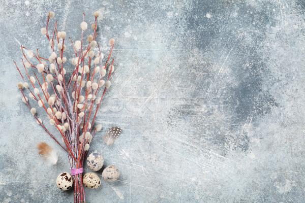 Ovos bichano salgueiro páscoa cartão topo Foto stock © karandaev