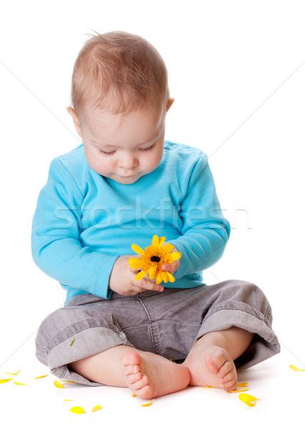 небольшой ребенка играет желтый цветок изолированный белый Сток-фото © karandaev