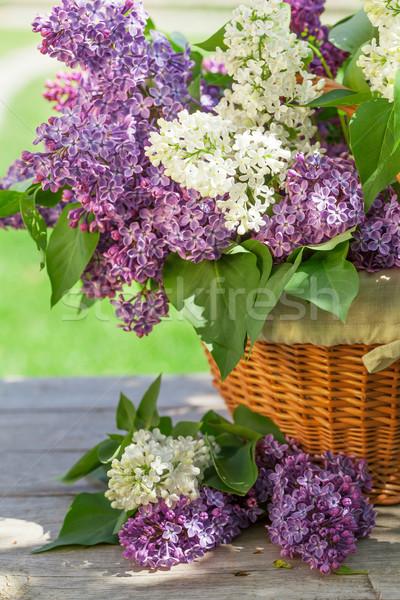 カラフル ライラック 花 バスケット 庭園 表 ストックフォト © karandaev