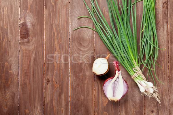 Fresh garden spring onion Stock photo © karandaev