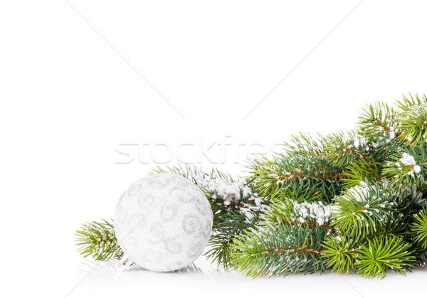 Arbre de noël branche neige babiole isolé blanche Photo stock © karandaev