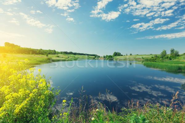 Tájkép tavacska dombok napos nyár jelenet Stock fotó © karandaev