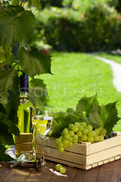 White wine bottle, glass, vine and grapes Stock photo © karandaev