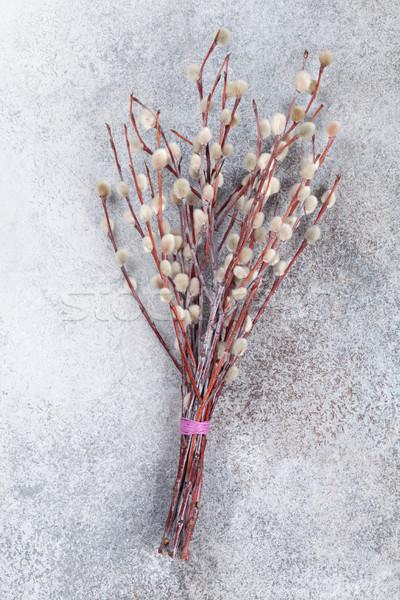 Bichano salgueiro rústico pedra Páscoa cartão Foto stock © karandaev