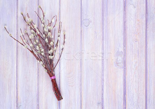 Pussy wilg bos houten tafel exemplaar ruimte textuur Stockfoto © karandaev
