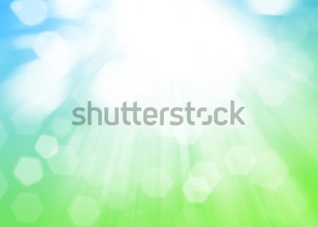 Sunny blurred bokeh background Stock photo © karandaev