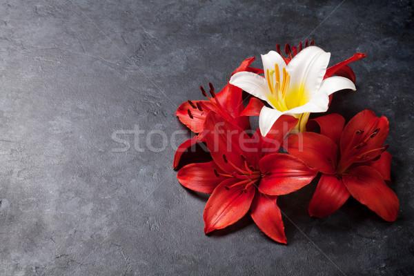 красочный Лилия цветы темно каменные пространстве Сток-фото © karandaev