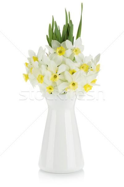 букет белый нарциссов изолированный весны природы Сток-фото © karandaev