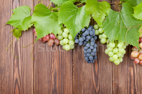 Bunch of red, purple and white grapes Stock photo © karandaev