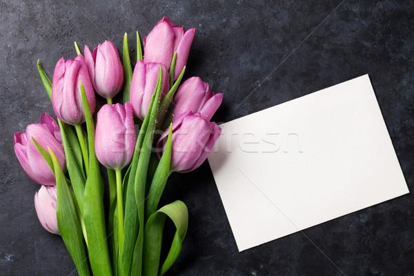 свежие Purple Tulip цветы темно Сток-фото © karandaev