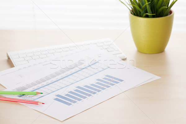 Office desk with charts, plant and pc Stock photo © karandaev