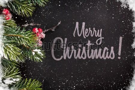 Christmas background with snow fir tree Stock photo © karandaev
