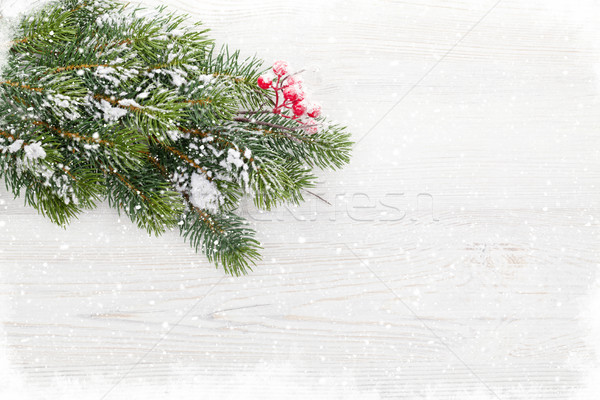 Christmas backdrop with fir tree covered by snow Stock photo © karandaev