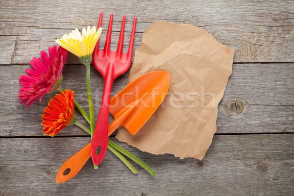 Kerti eszközök virágok papír copy space fa asztal tavasz Stock fotó © karandaev
