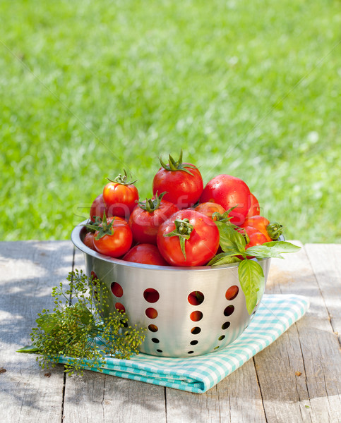 Foto d'archivio: Fresche · maturo · pomodori · tavolo · in · legno · legno · verde