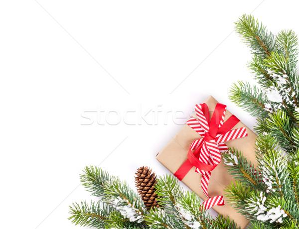 Christmas tree branch with gift box Stock photo © karandaev
