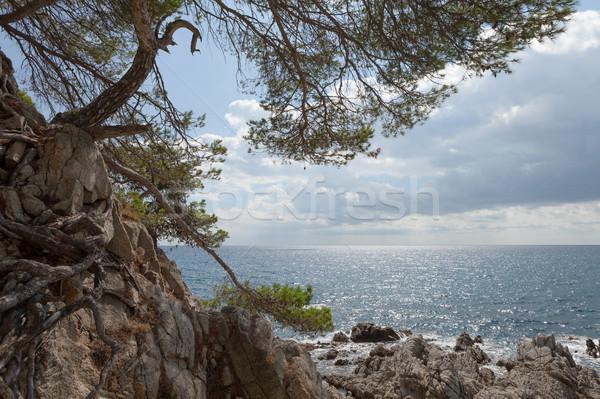 Zeegezicht bergen middellandse zee zee Spanje natuur Stockfoto © karandaev